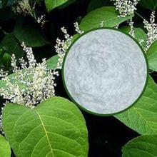 白藜芦醇 - 希尔药业