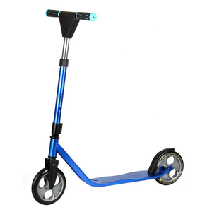 Stunt Style 2 Wheels Folding Scooter