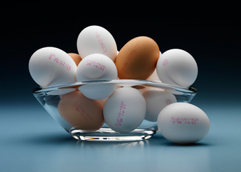 Egg Printing Solution