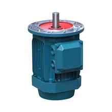 IEC-通用-三相铝壳电机