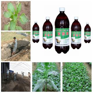 農業肥料接種物生物有機接種物