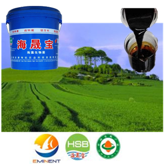 海草Bio Organic Water Fertilizer與NPK Fertilizer為施肥