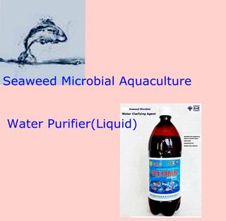 海草有機生物preparate為Purifying Aquacultture Field