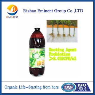 海草Bio Organic Manure為促進Root Growth與Chelated Microelement