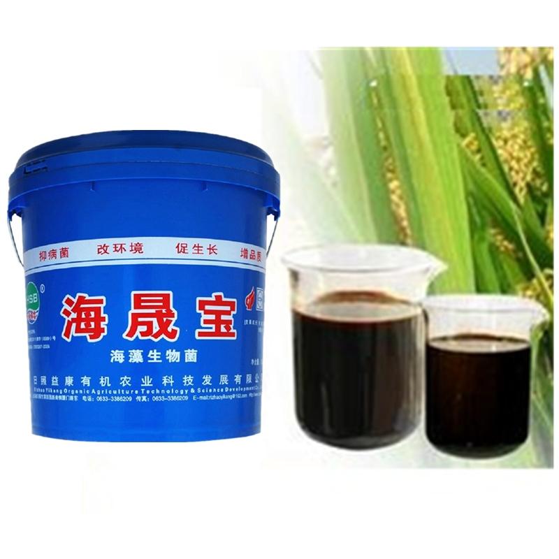 海藻微生物菌劑水溶肥料
