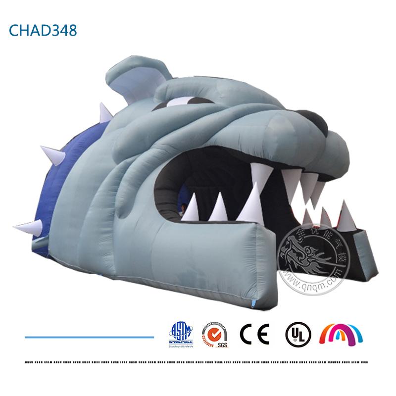 CHAD348(1)(首图)
