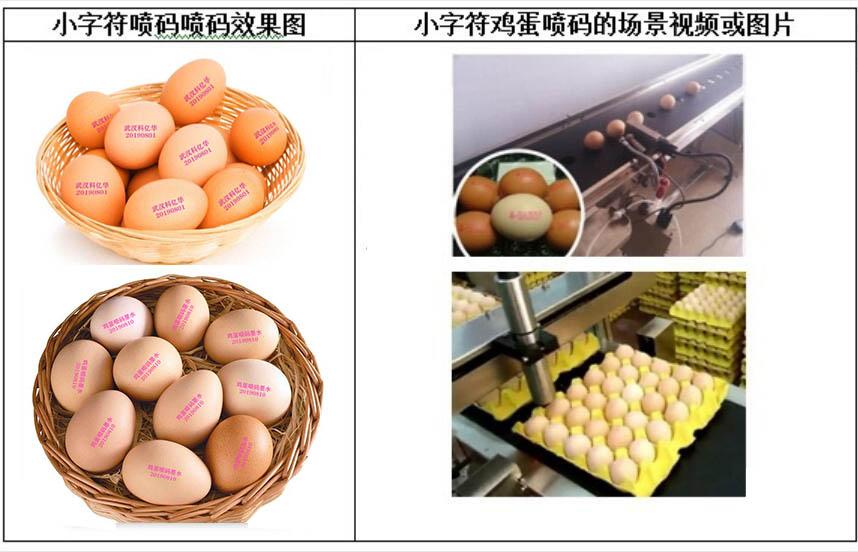 鸡蛋喷码墨水2