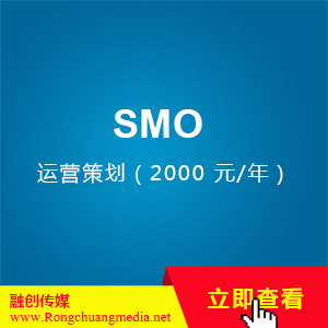 SMO-Operation Planning (2000 yuan/year)