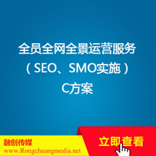 Panoramic operation service for all staff and the whole network [SEO, SMO implementation] Plan C