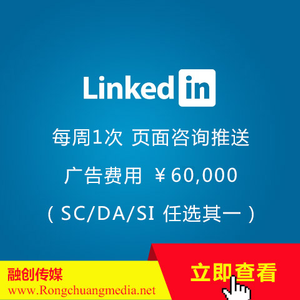 LinkedIn (linkedin) Package-Advertising Premium Edition (¥84588/year)